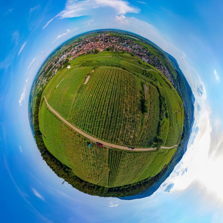 https://cf.ltkcdn.net/wine/images/slide/250461-850x850-wine-globe.jpg