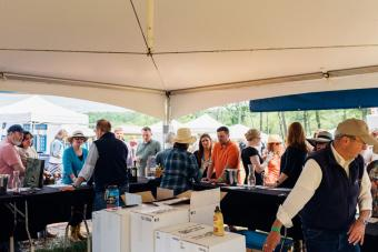 People at the Montpelier Wine Festival