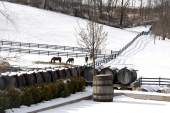 17 Lovely Ohio Wineries to Visit