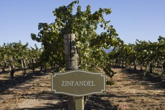 9 of the Best Zinfandels Under $15