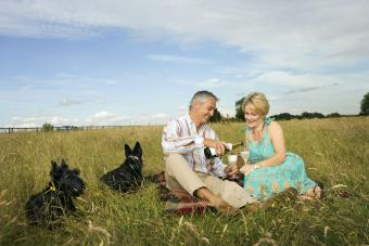 Couple pouring wine at a picnic
