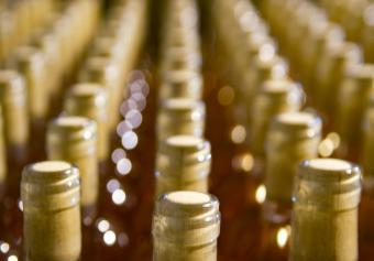 Rack of maturing wines