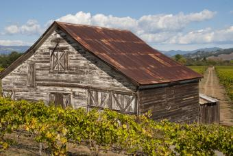 Barn and vineyards in the Russian River Valley