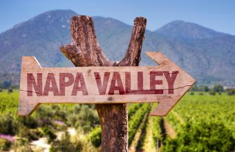 Photos of 13 Wineries in Napa