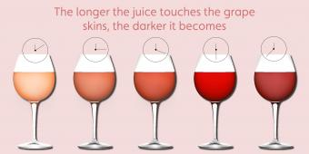 Rosé Wine Flavours and Characteristics
