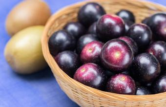 Guide to Muscadine Wine