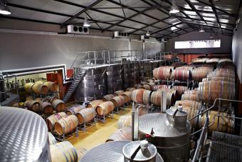 Wine barrels and fermentation vessels in a factory