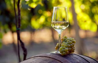 7 Best California Chardonnay Wines