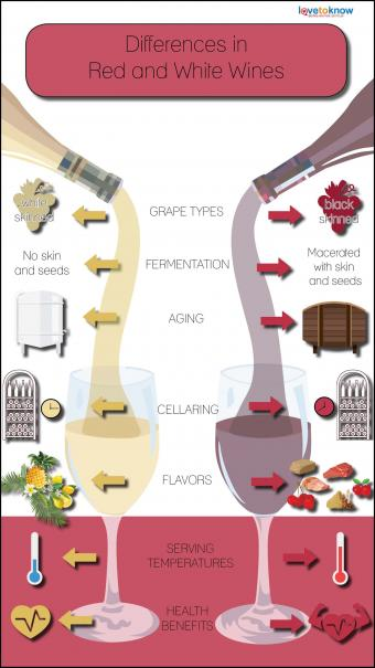 diagram comparing differences in red and white wines