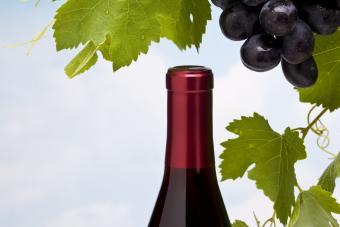 Merlot grapes and wine bottle