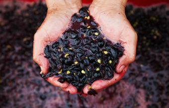 Man with fresh crushed red grapes