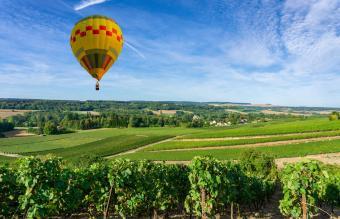 hot air balloon on Vineyards