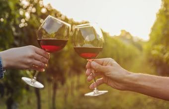 What You Should Know About Merlot Wine Glasses