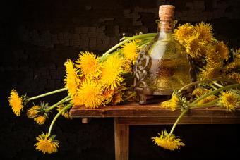 Dandelions and wine flask