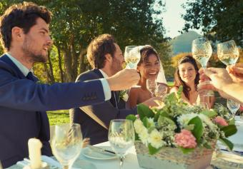 Wedding party toasting at reception