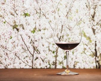 Cabernet sauvignon wine in goblet