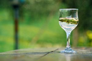 white wines_chardonnay