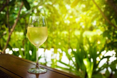 Cold Sauvignon Blanc wine