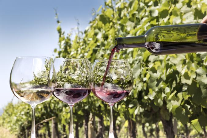 Pouring Zinfandel and white Zinfandel wines