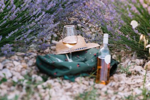 Rosé wine in lavender field in Provence
