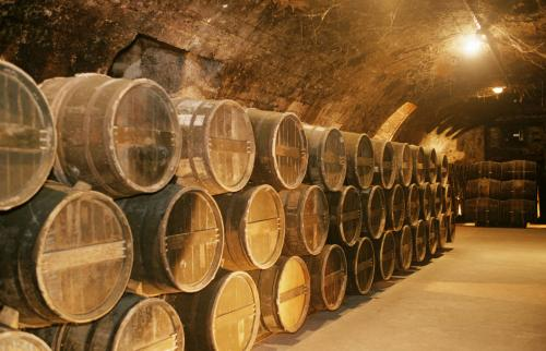 Rows of kegs in cellar