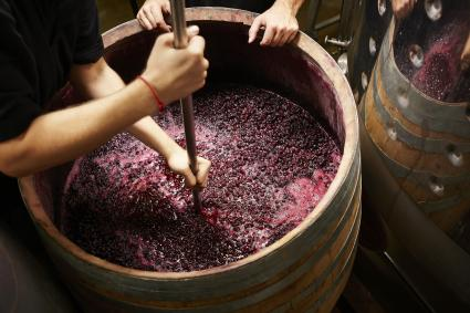 Plunging the grapes cap to extract color
