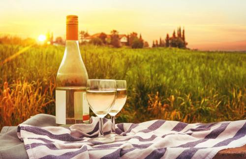Wine bottle on picnic