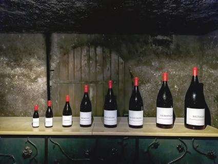 Bottles of different sizes in a French wine cellar
