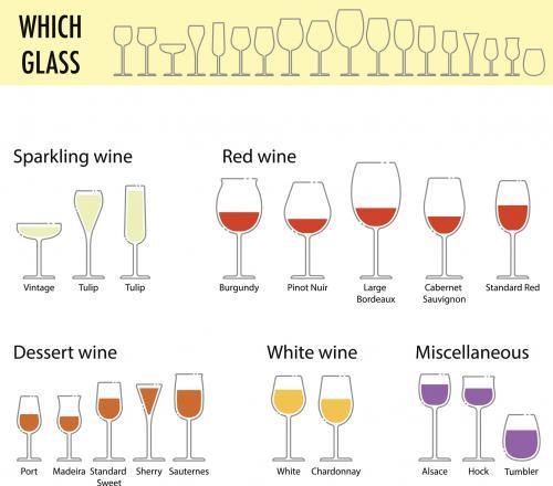 wine glasses chart