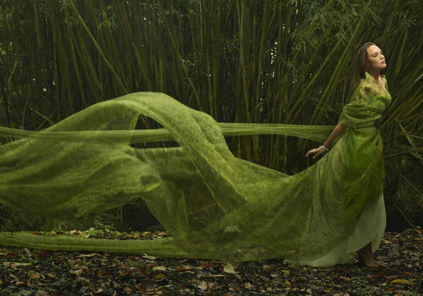https://cf.ltkcdn.net/womens-fashion/images/slide/258427-850x595-1_Flowing_green_dress.jpg