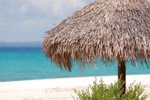 Tropical island beach scene