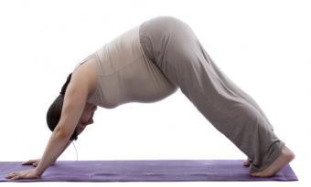 https://cf.ltkcdn.net/yoga/images/slide/122097-832x501-pdowndog.jpg