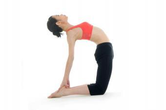 https://cf.ltkcdn.net/yoga/images/slide/181364-849x565-Camel-Yoga-Pose.jpg
