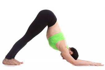 5 Dolphin Pose Steps + Modifications for Beginners