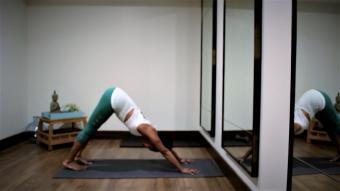 Downward dog pose to enter yoga handstand