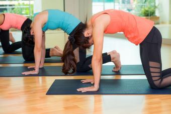 Yoga class doing cat pose