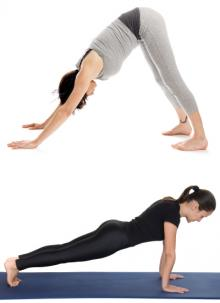 downward facing dog and plank poses