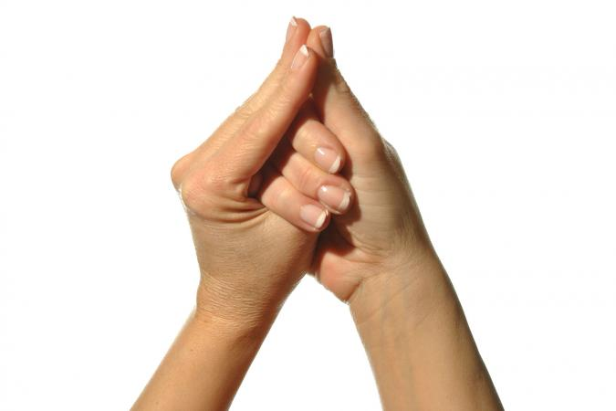 mudra hands pose